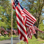 American flags lining the road to Colfax Cemetery on Memorial Day Weekend, Colfax, Washington